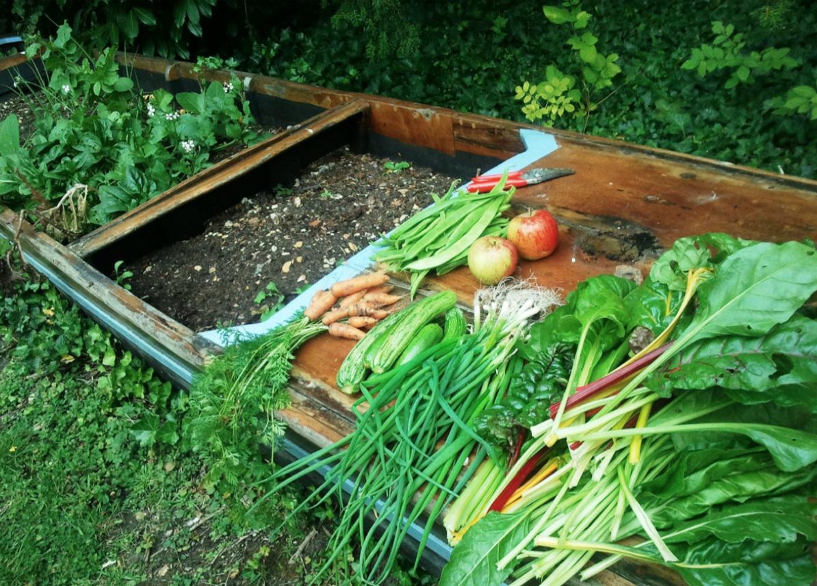 [Gardening]